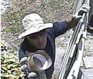Waterford Apt Theft Suspect Photo