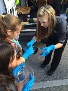 Girl Scout Tour 2015 Stover