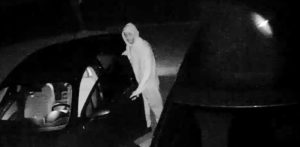 Golden Pond Auto Burglary